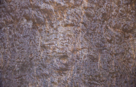 imbuia-pomele-oleari-madeiras