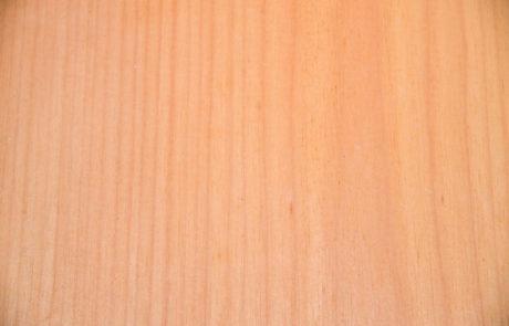 tauari-oleari-madeiras